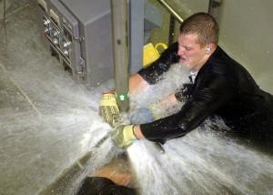 plumber-goldy